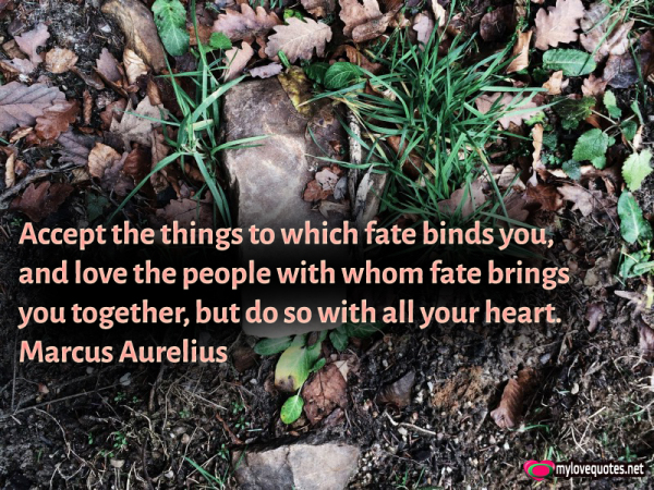 accept the things to which fate binds you and love the people
