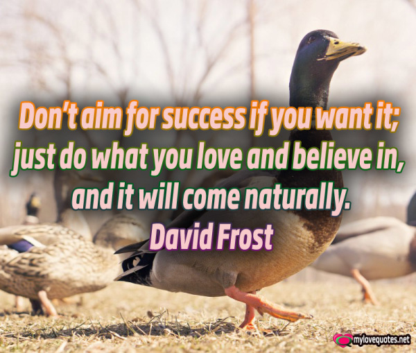 don't aim for success if you want it