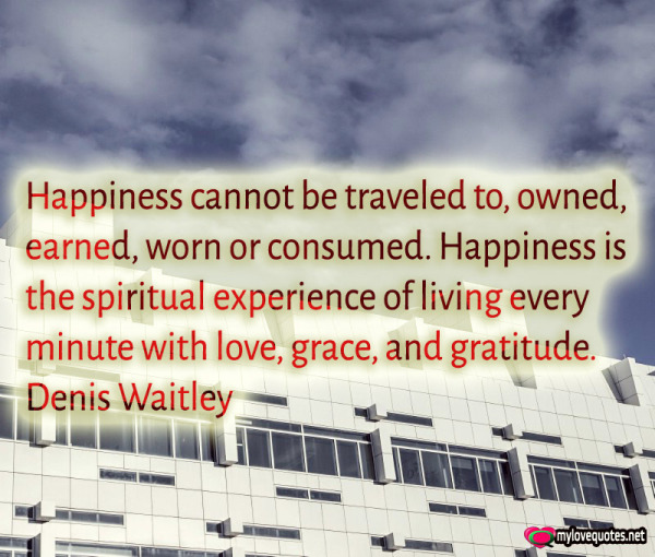 happiness cannot be traveled to owned earned