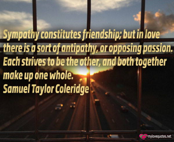sympathy constitutes friendship but in love there is