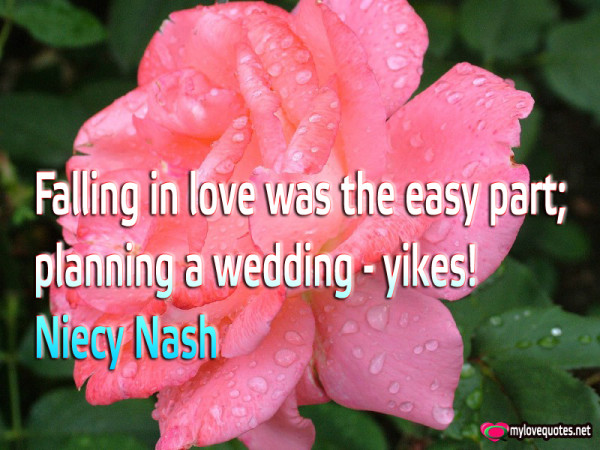 falling in love was the easy part planning a wedding
