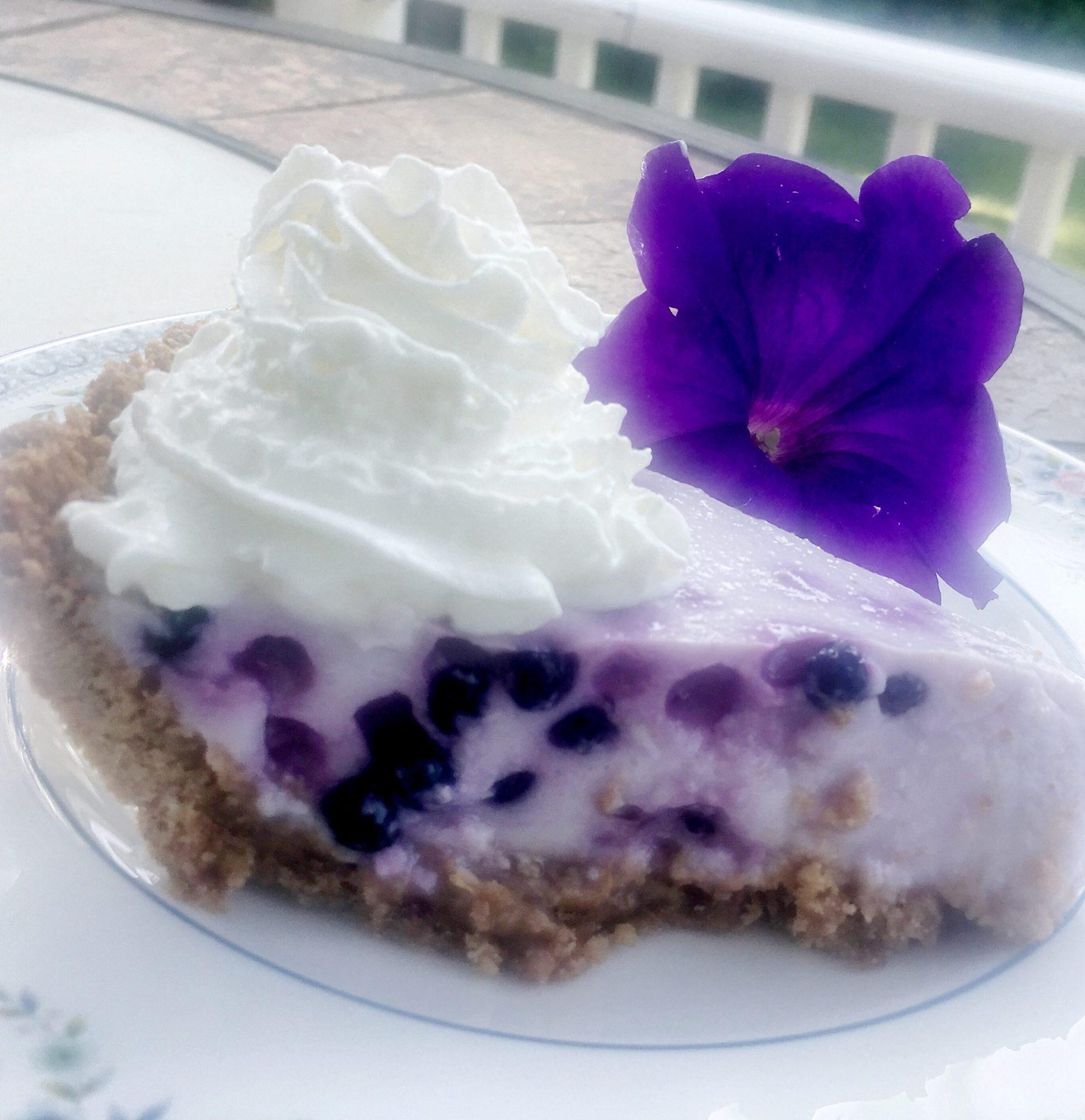 blueberry yogurt pie with purple petunia