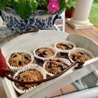 These are the Alpha & the Omega 3's of Blueberry Muffins!