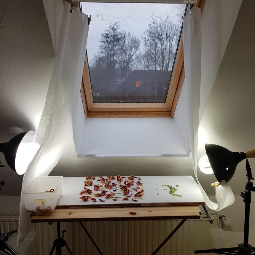 foto's maken thuis
