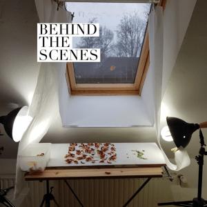 tips fotografie en licht
