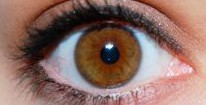 Highlight: What foods should I be eating for good eye health?
