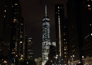 Standing Tall- Night view from Battery Park