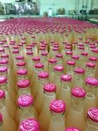 bottling-make-a-stand-finished