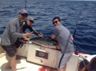 Puerto Vallarta fishing report with My Marlin sportfishing