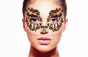 1leopard remix