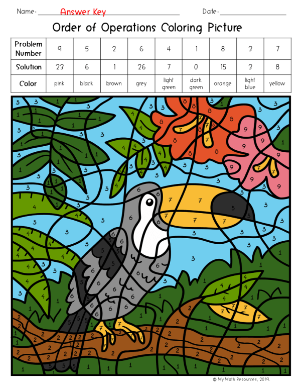 Order of Operations Toucan Coloring Picture
