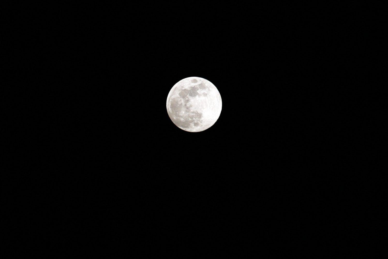 New moon https://unsplash.com/photos/sYmdVhPV-sY