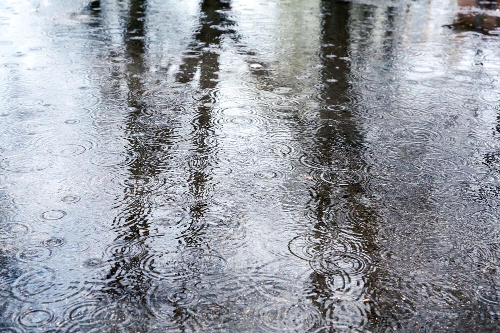 rain drops on the ground