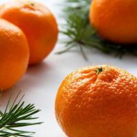Legend of the Christmas Orange