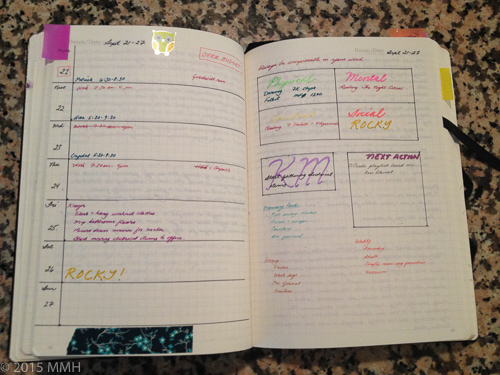 Filled in week at a glance