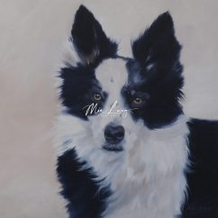Border Collie by Mia Laing
