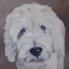 Old English Sheep Dog By Mia Laing