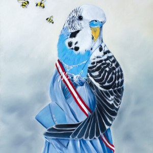 Budgerigar Bird dressed up, australian wildlife, australian artist Mia Laing