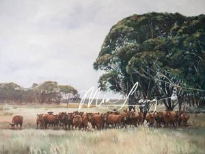 landscape of cows and trees, mialaing