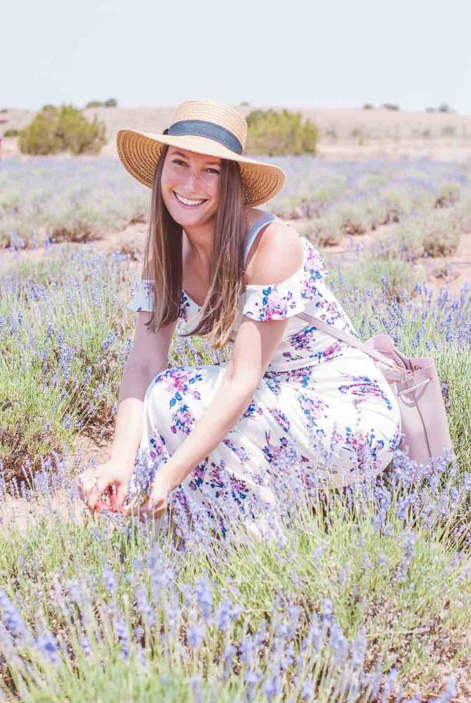 Woman wearing a hat and sitting in a field of lavender field
