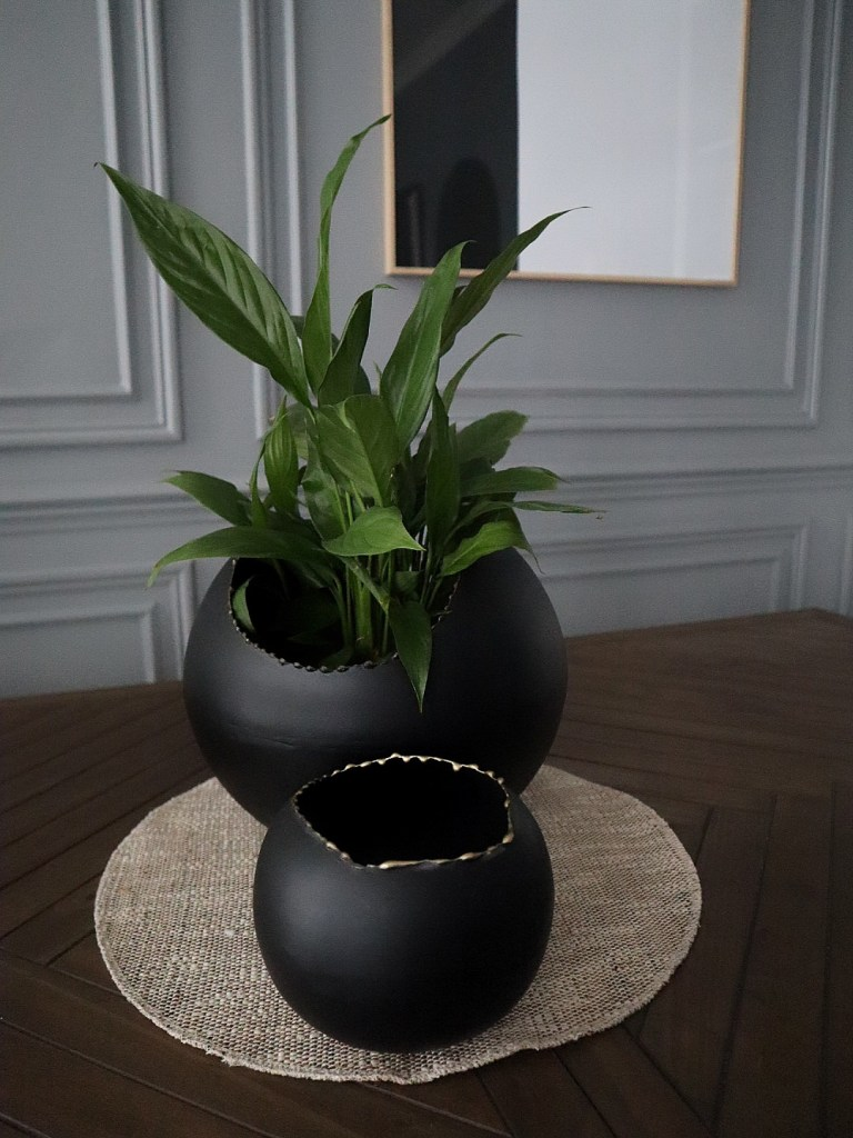 Evo Decorative Bowls close up with plant
