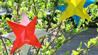 Patriotic Origami Books & DIY