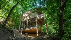 TreeHouses-Noszvaj-7-800x445
