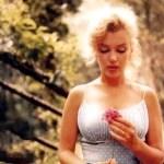 MyMirror – Marilyn, akit senki nem szeretett igazán