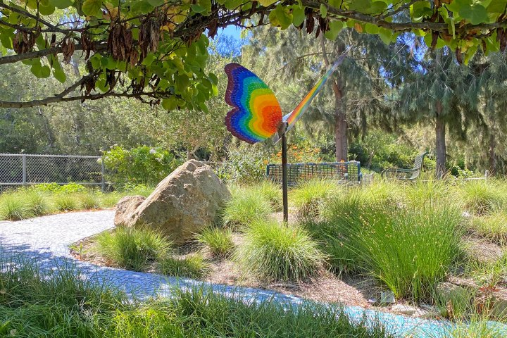 Butterfly Garden Mission Viejo