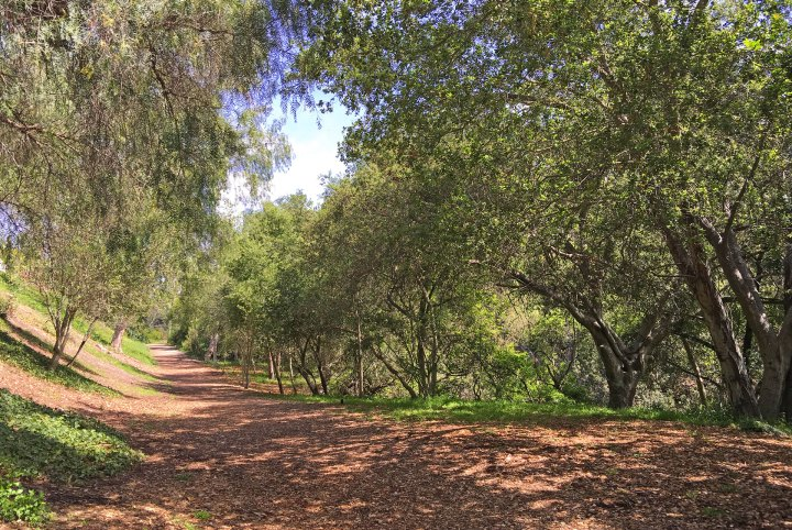 Parks in Mission Viejo Wilderness Glen Park Open Space in Mission Viejo