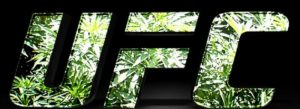UFC - Marijuana