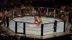 A Simple Guide To MMA Betting