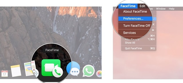 set your FaceTime ringtone 1