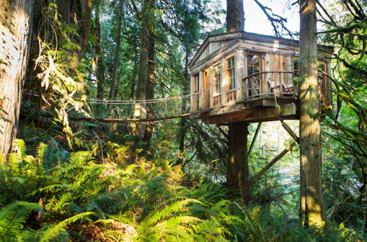 treehouses for grown-ups pete nelson treehouse point