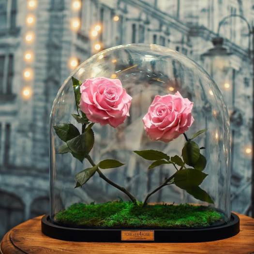 real enchanted rose forever rose london beauty and the beast