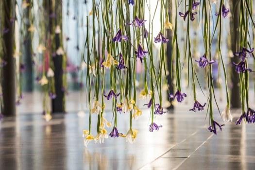 rebecca louise law the iris exhibition ephemeral art decay