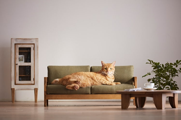 Japanese Artisans Release a Range of High Quality Cat Furniture Okawa City Cat Furniture