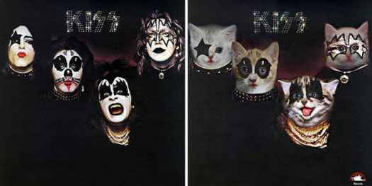 Cat Album Covers
