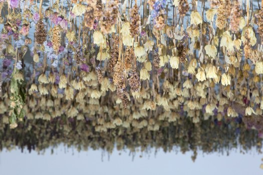 Hanging Flowers Installation Art by Rebecca Louise Law