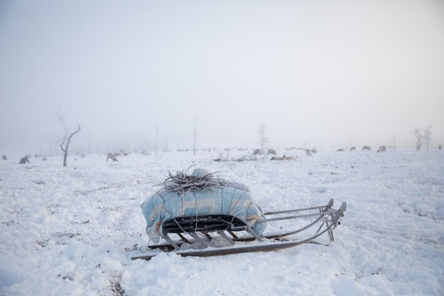Photo of Siberia by Oded Wagenstein