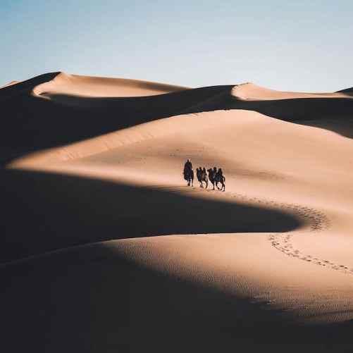 Moğol kartal avcıları Leo Thomas tarafından Fotoğraflar