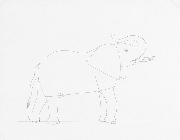 Learn How To Draw A Realistic Elephant In 7 Easy Steps