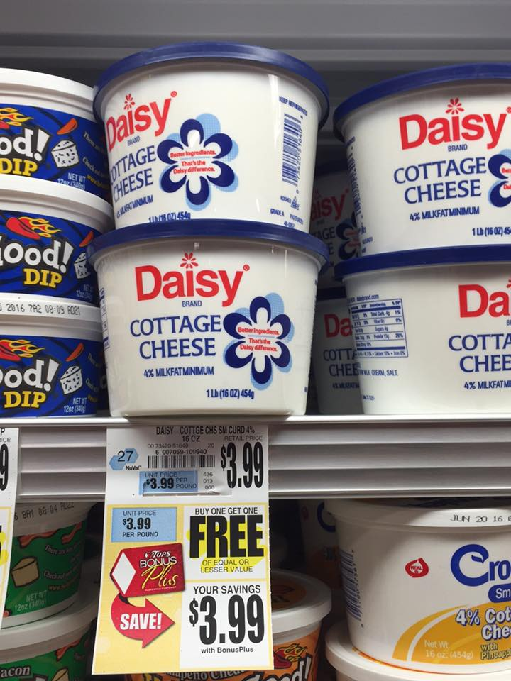 Daisy Cottage Cheese