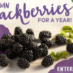 Win Blackberries For A Year Sweepstakes
