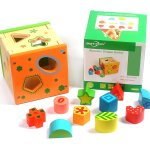 Wooden Shape Sorter Skill Development