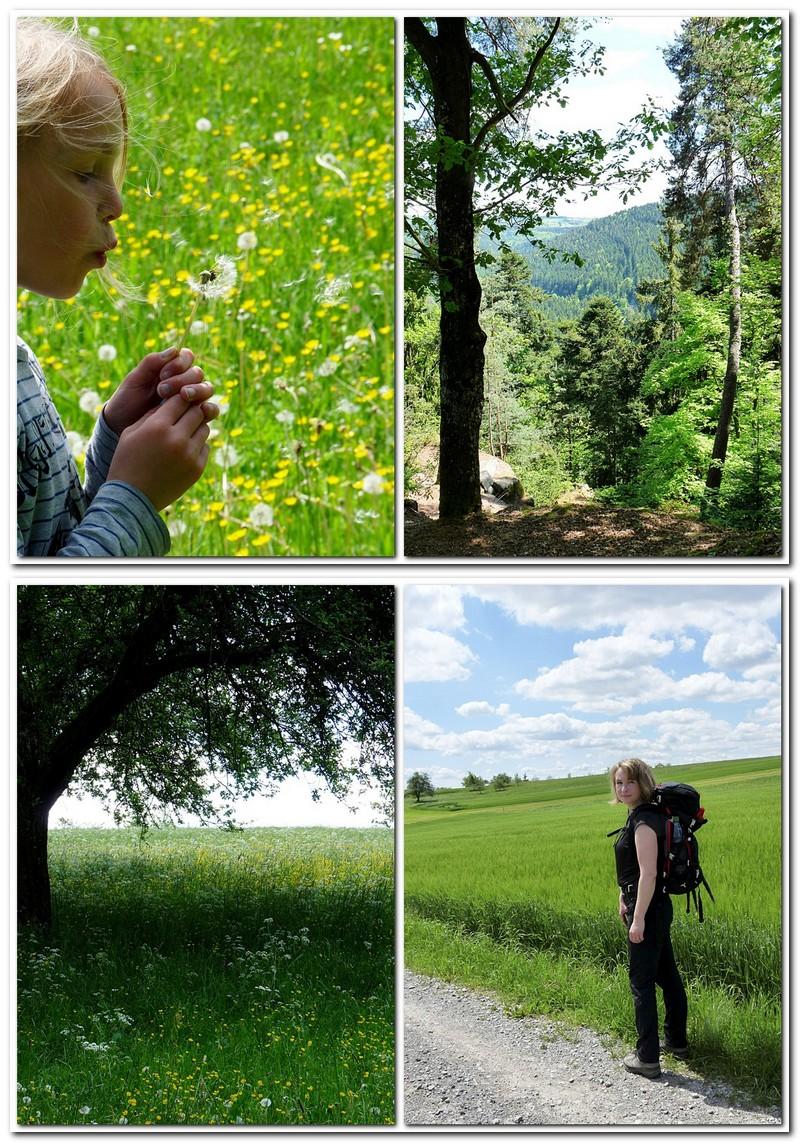 Unsere Schwarzwaldtour im Mai