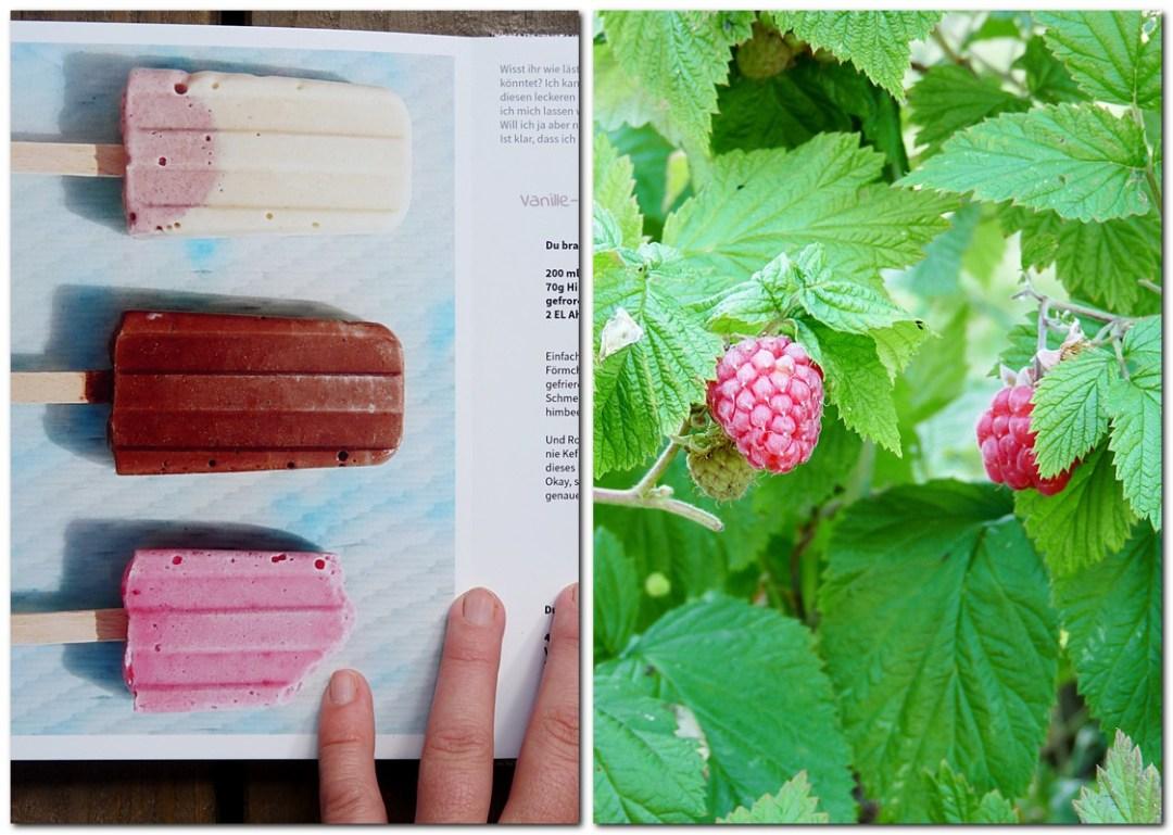 Eiscreme im Fotobuch von saal Digital