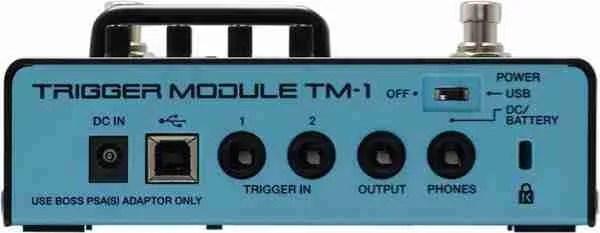 Roland TM-1 ports