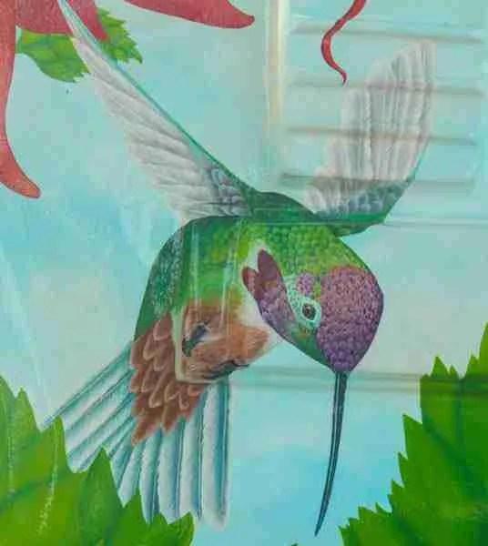 Hummingbird on guitar
