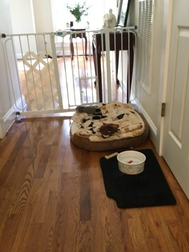 Hall with dog bed and water bowl.